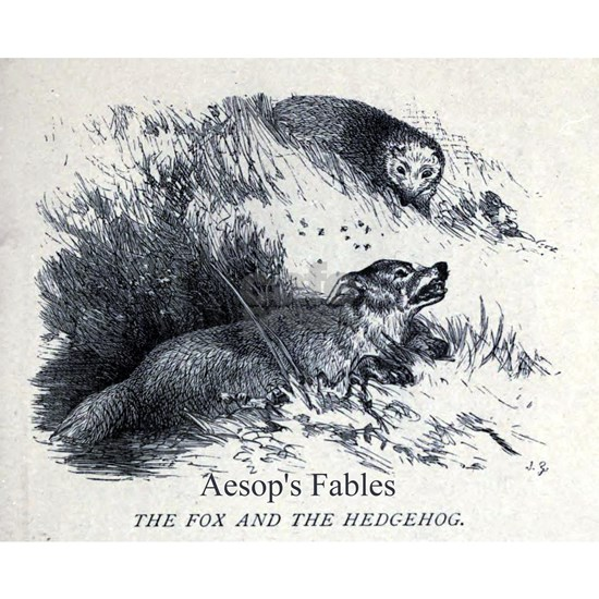 Harrison Weir - Fox and the Hedgehog - Aesop - 18