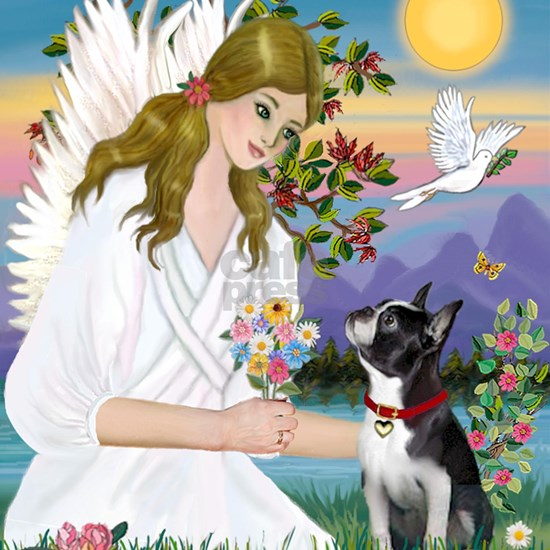 Angel Love - Boston Terrier (8x10)