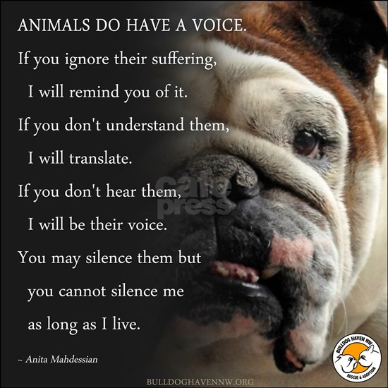 VOICE OF ANIMALS