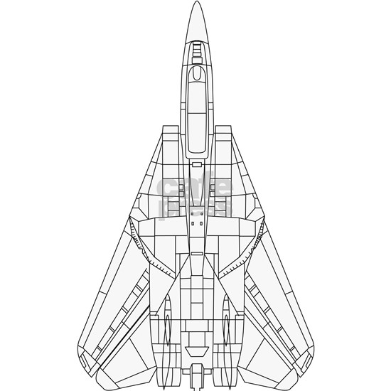 F-14 Tomcat Top View