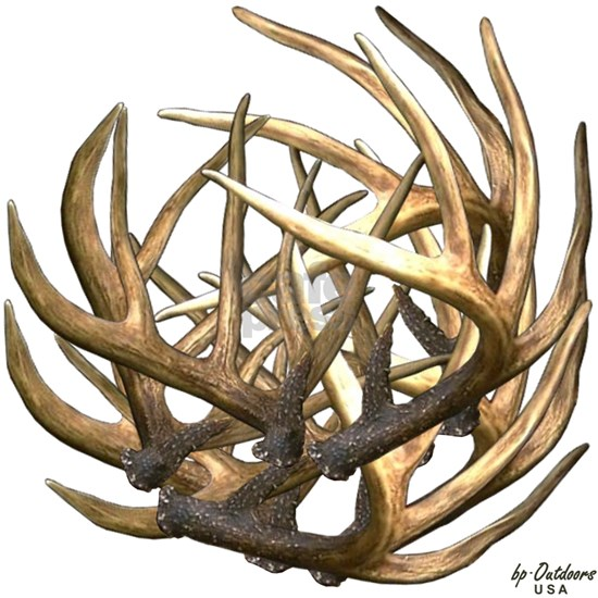 Whitetail Buck Deer Antler Art Cluster
