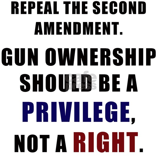 Repeal the second amendment 2