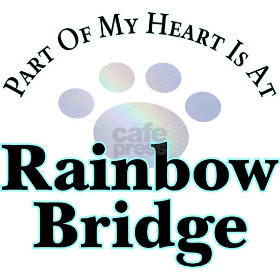 Rainbow Bridge Rainbow Paw