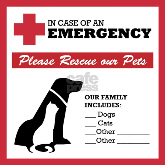 In Case of Emergency: Pet Rescue Sticker