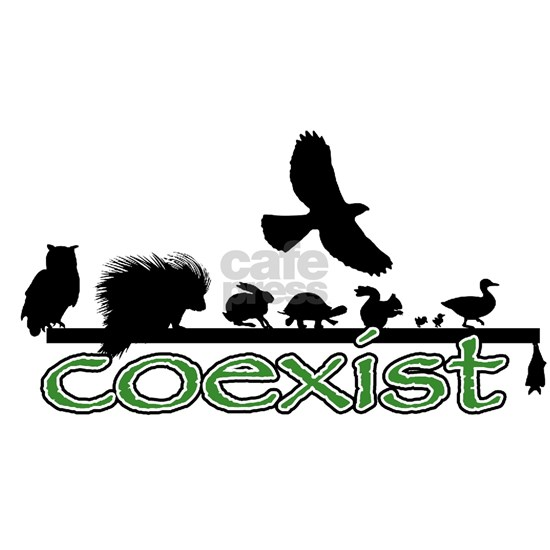cfw coexist art