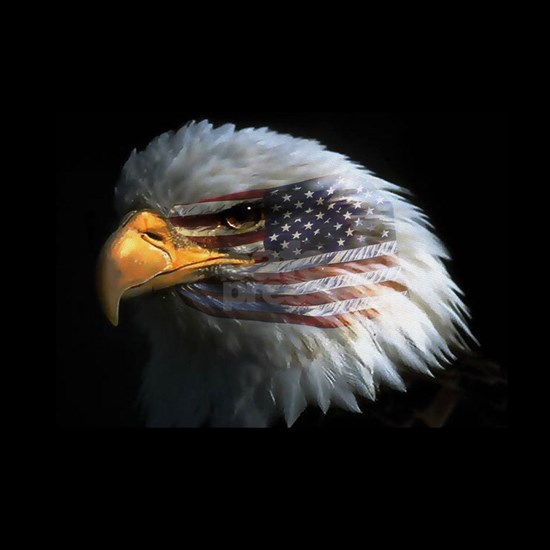 eagle3d