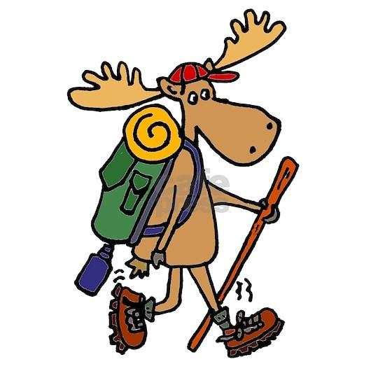 Moose Hiking