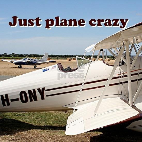 Just plane crazy: Waco biplane aircraft