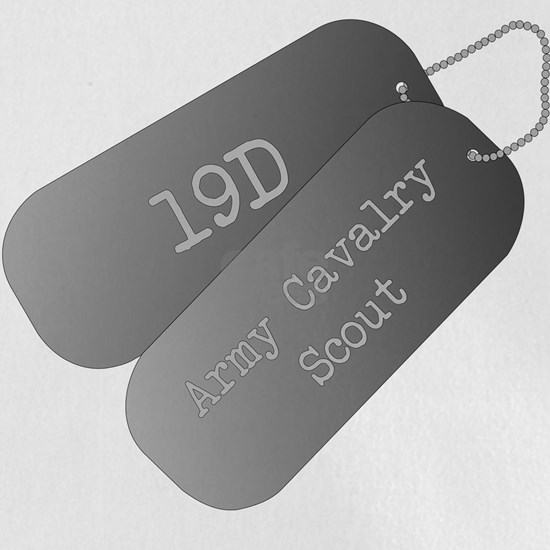 19D Army Cavalry Scout