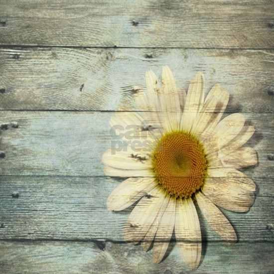 shabby chic country daisy