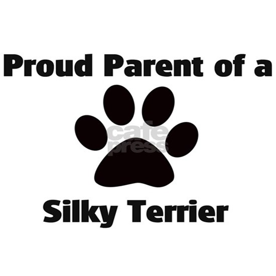 Proud: Silky Terrier