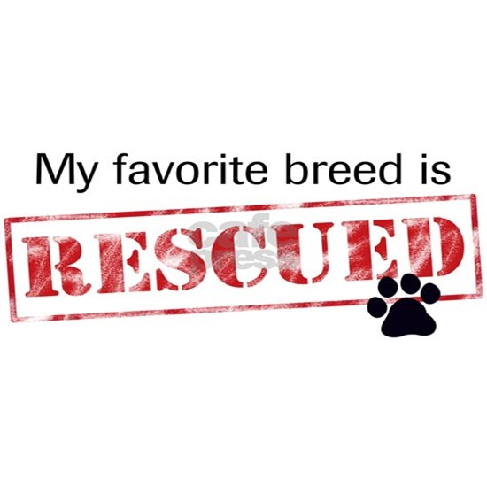 My Favorite Breed Is Rescued