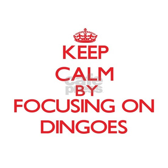 Keep calm by focusing on Dingoes