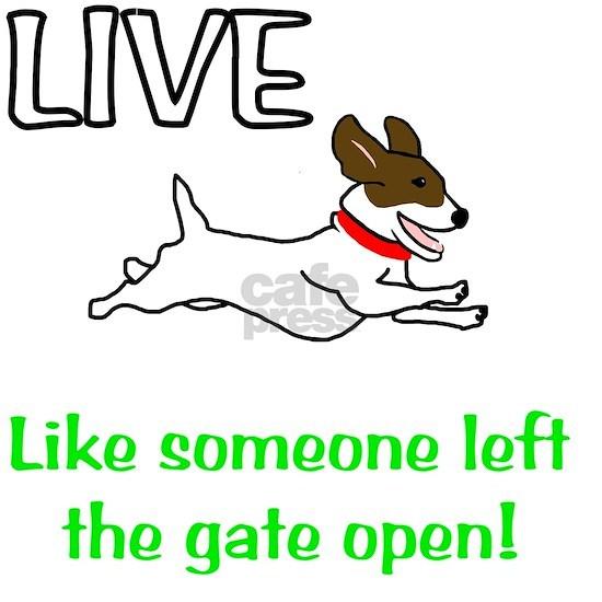 Live_Gate