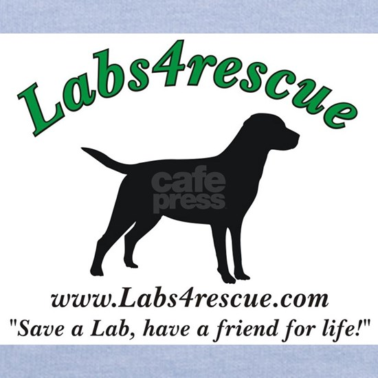 labs4rescue