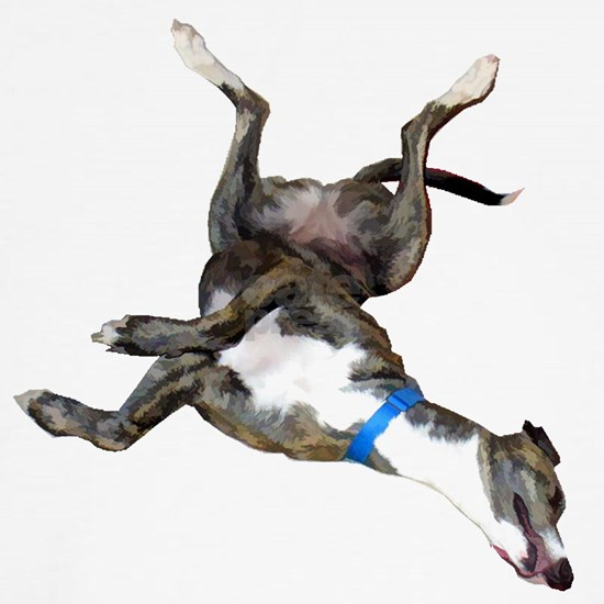 Cockroaching  Greyhound