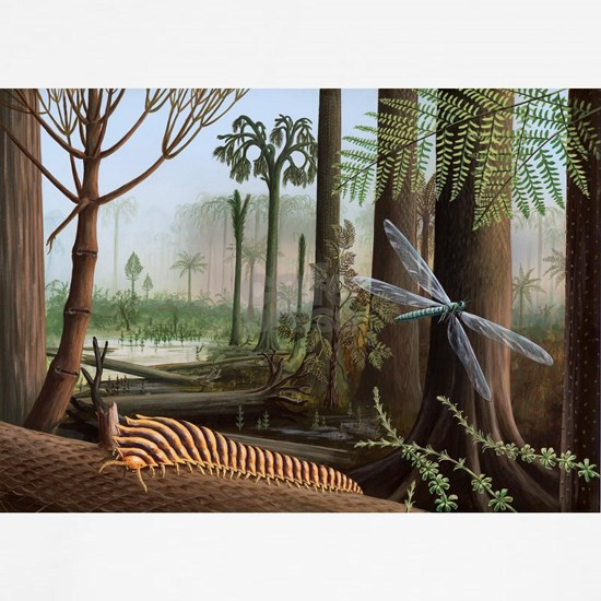 Carboniferous insects, artwork