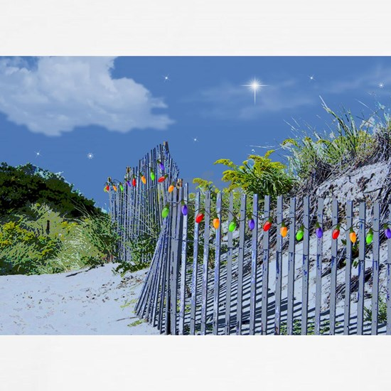 Beach Dune and Fence with Xmas Lights at Evening