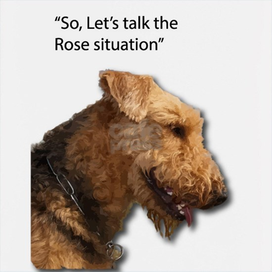Airedale Destroyed your Rose Bushes