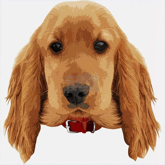 EnglishCockerSpaniel_face001