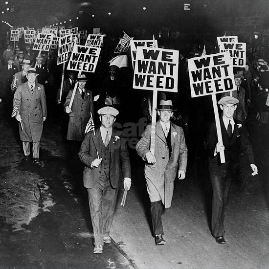 We Want Weed! Protest