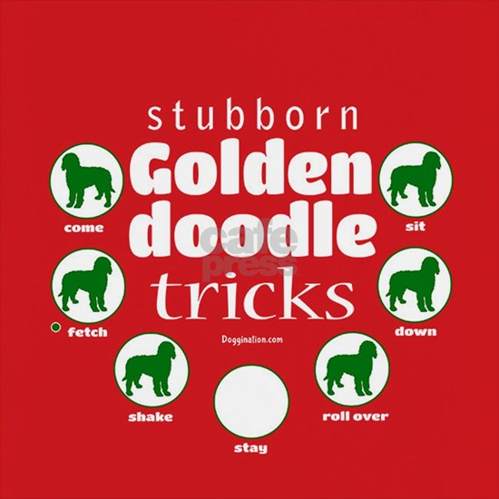 Goldendoodle Tricks