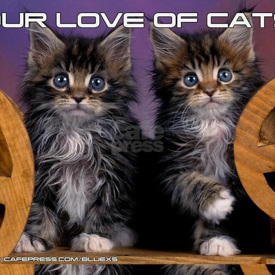 Cover Cat