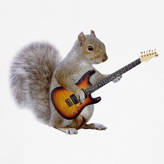 squirrel_guitar