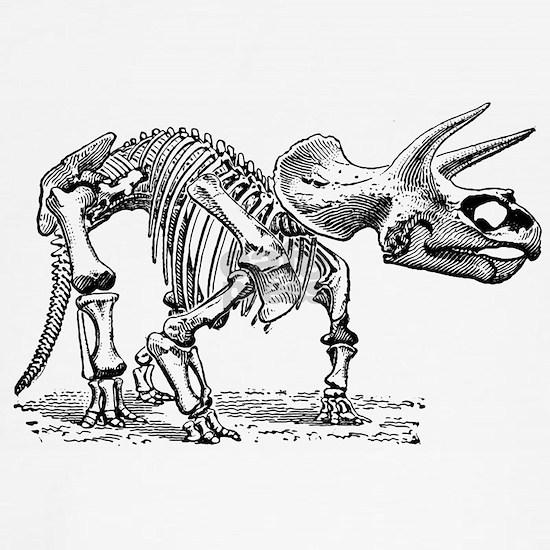 Triceratops4