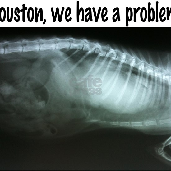 Houston We have a problem