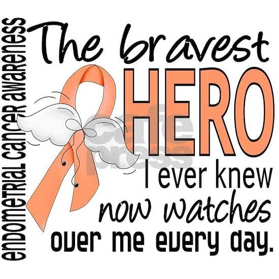D Endometrial Cancer Bravest Hero I Ever Knew