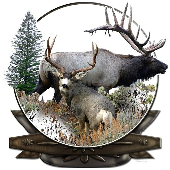 Big Game elk and deer
