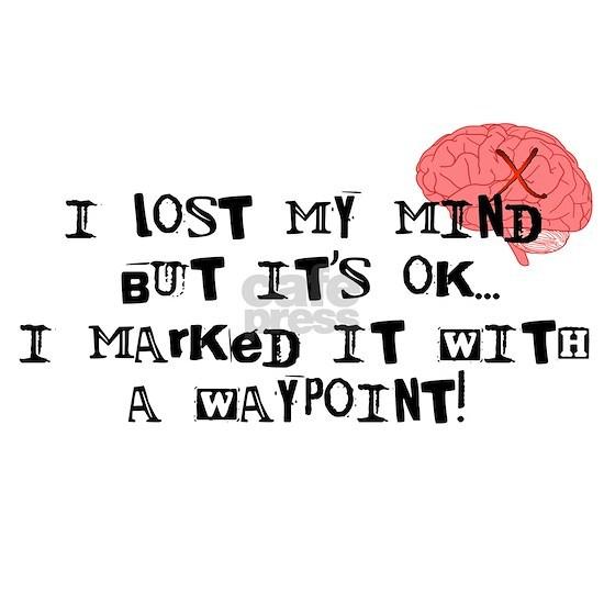 Lost My Mind...