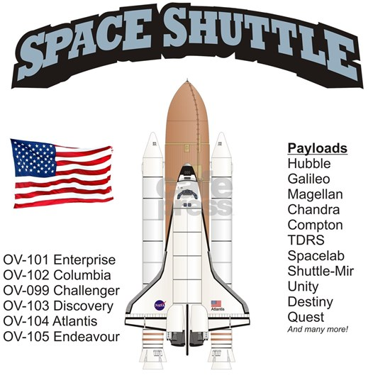 Shuttle_History_RK2011_10x10