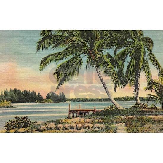 Vintage Coconut Palms