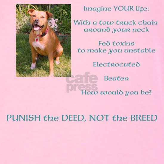 Bull Breed Education Aqua Print