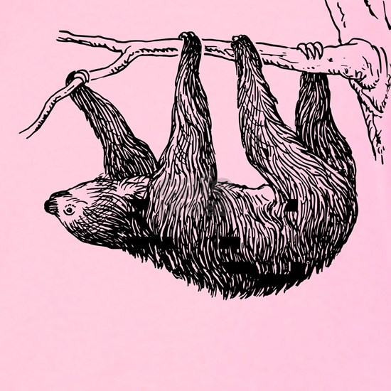 Vintage Sloth Hang In There