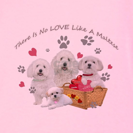 No Love Like A Maltese