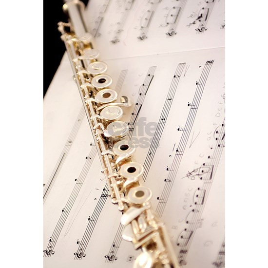 Flute and Music For Phone Case