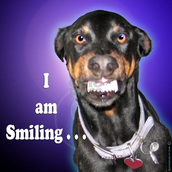 10x10 doberman I am Smiling