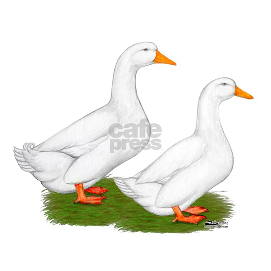 White Pekin Ducks 2
