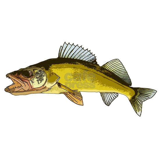 walleye art