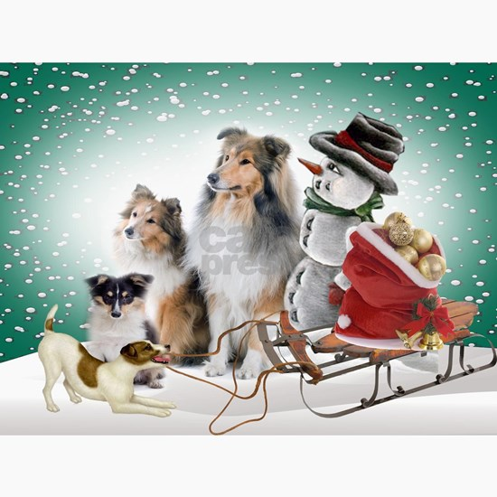 Sheltie Xmas With Jack Russell Terrier