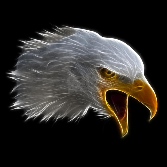 American Bald Eagle Head