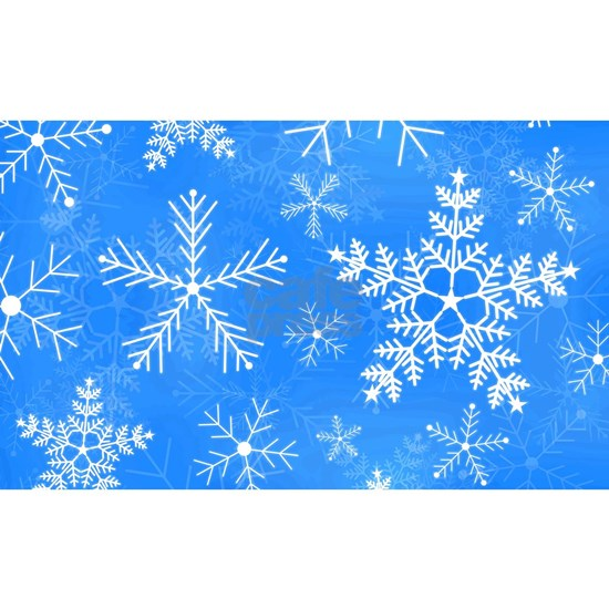 Blue And White Snowflake Pattern 3 X5 Area Rug By