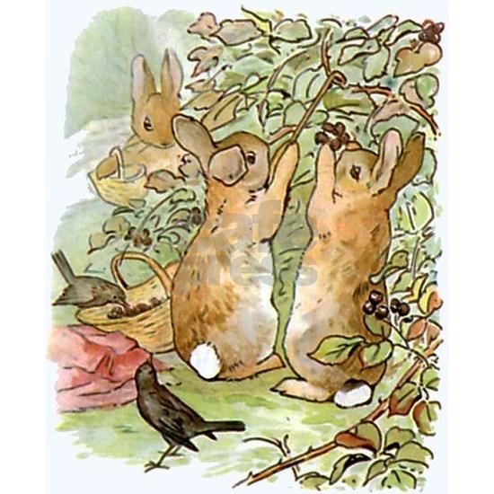 Beatrix Potter Peter Rabbit Rab 5