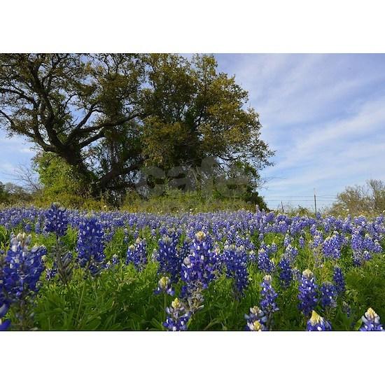 Bluebonnets and Oak Tree Design #2