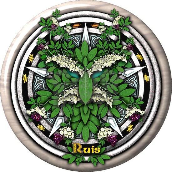 Elder Celtic Greenman Pentacle
