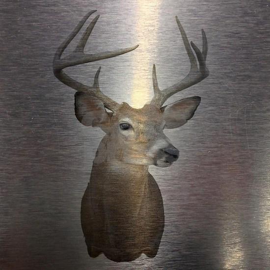 grunge texture western deer
