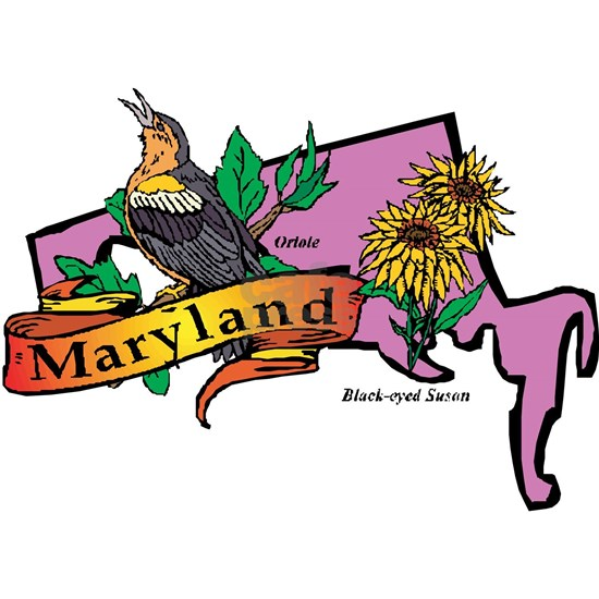 21306690-Maryland-map